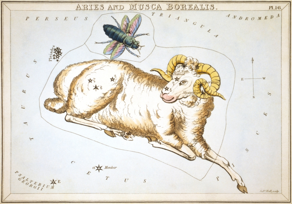 Sidney_Hall_-_Urania's_Mirror_-_Aries_and_Musca_Borealis.jpg