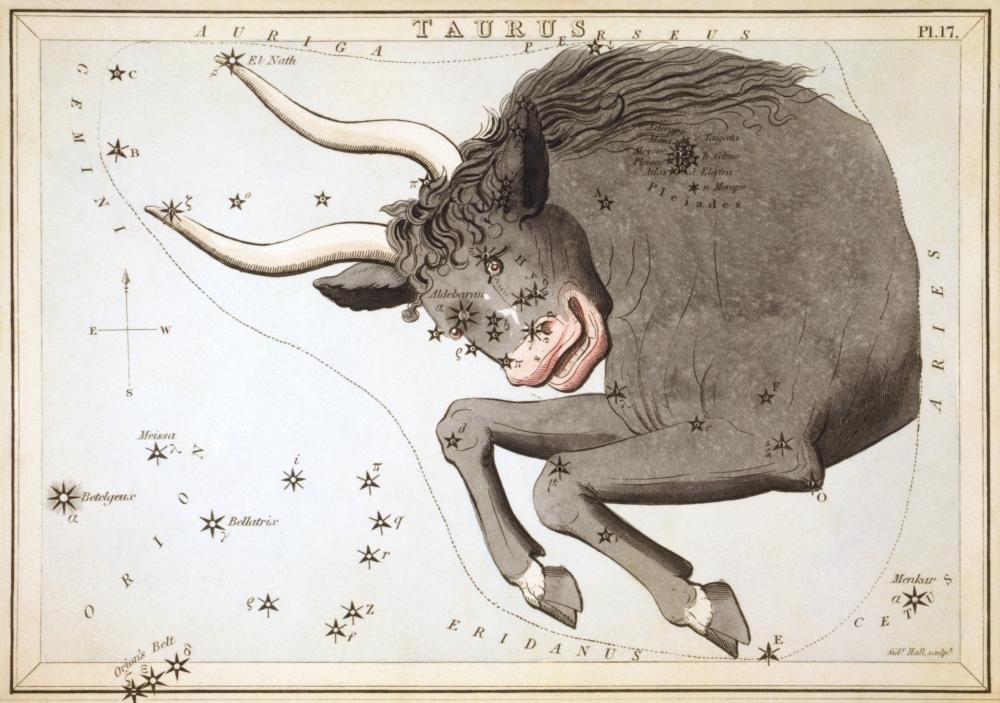 Sidney_Hall_-_Urania's_Mirror_-_Taurus.jpg