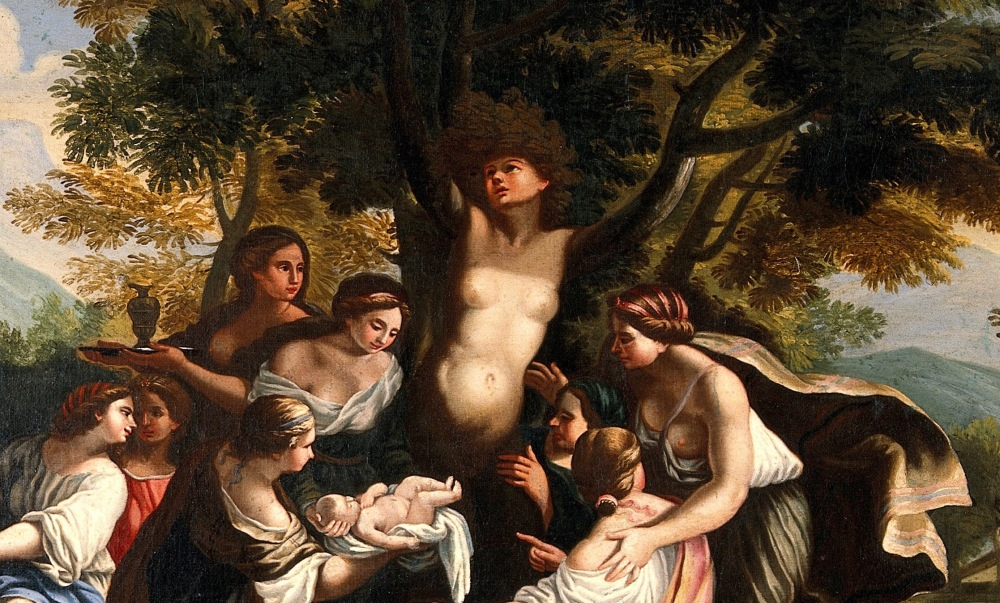 The_birth_of_Adonis_and_the_transformation_of_Myrrha._Oil_pa_Wellcome_V0017239 (1).jpg