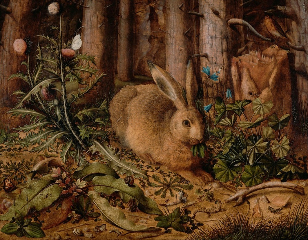 Hans_Hoffmann_(German_-_A_Hare_in_the_Forest_-_Google_Art_Project (1).jpg